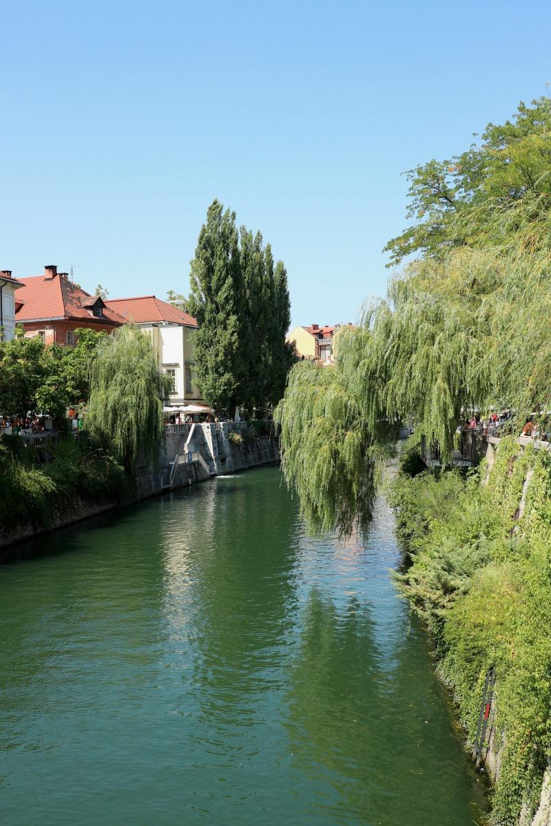 Ljubljanica - der Fluss von Ljubljana