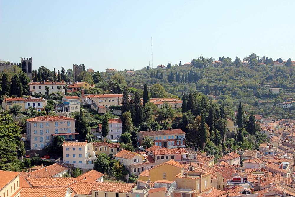 Istrien - ein bisschen sieht es aus wie die Toskana.