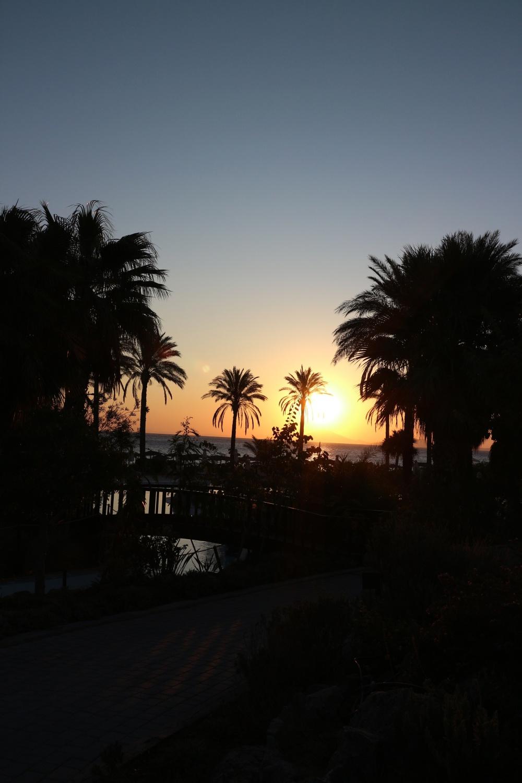 Sonnenaufgang auf Kos