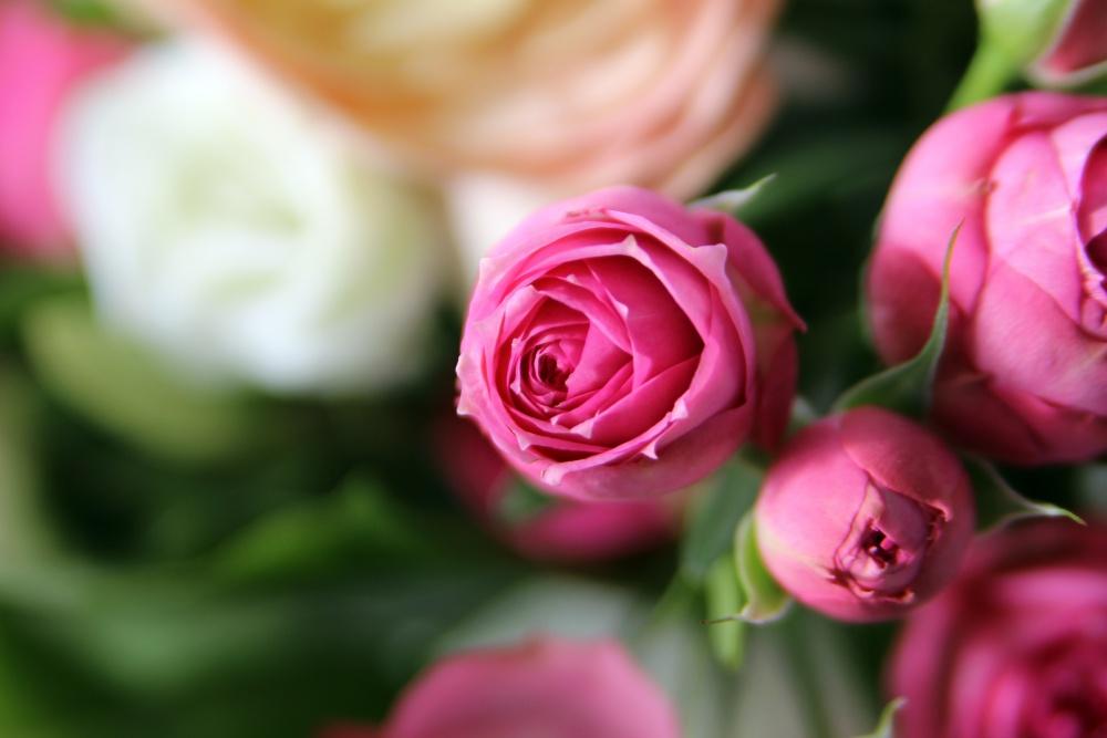 Wunderschöner Blumenstrauß