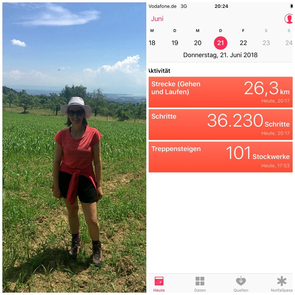 Statistik zu Wanderung von Friedrichshafen auf den Höchsten