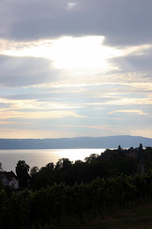 Goldene Stunde am Bodensee