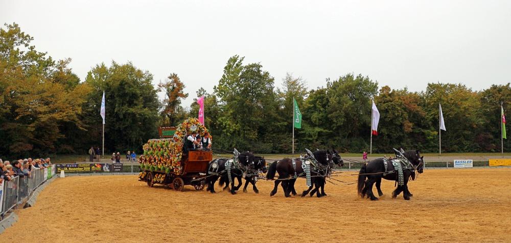 Landwirtschaftliches Hauptfest