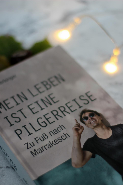 Rezension zu Das Leben ist eine Pilgerreise von Ernst Merkinger