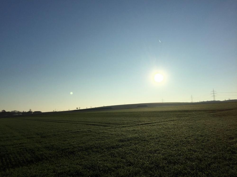 Morgenlauf