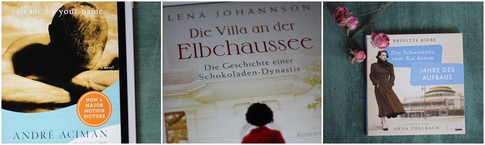 Lesemonat Januar 2019_Call Me By Your Name_Die Villa an der Elbchaussee_Jahre des Aufbaus