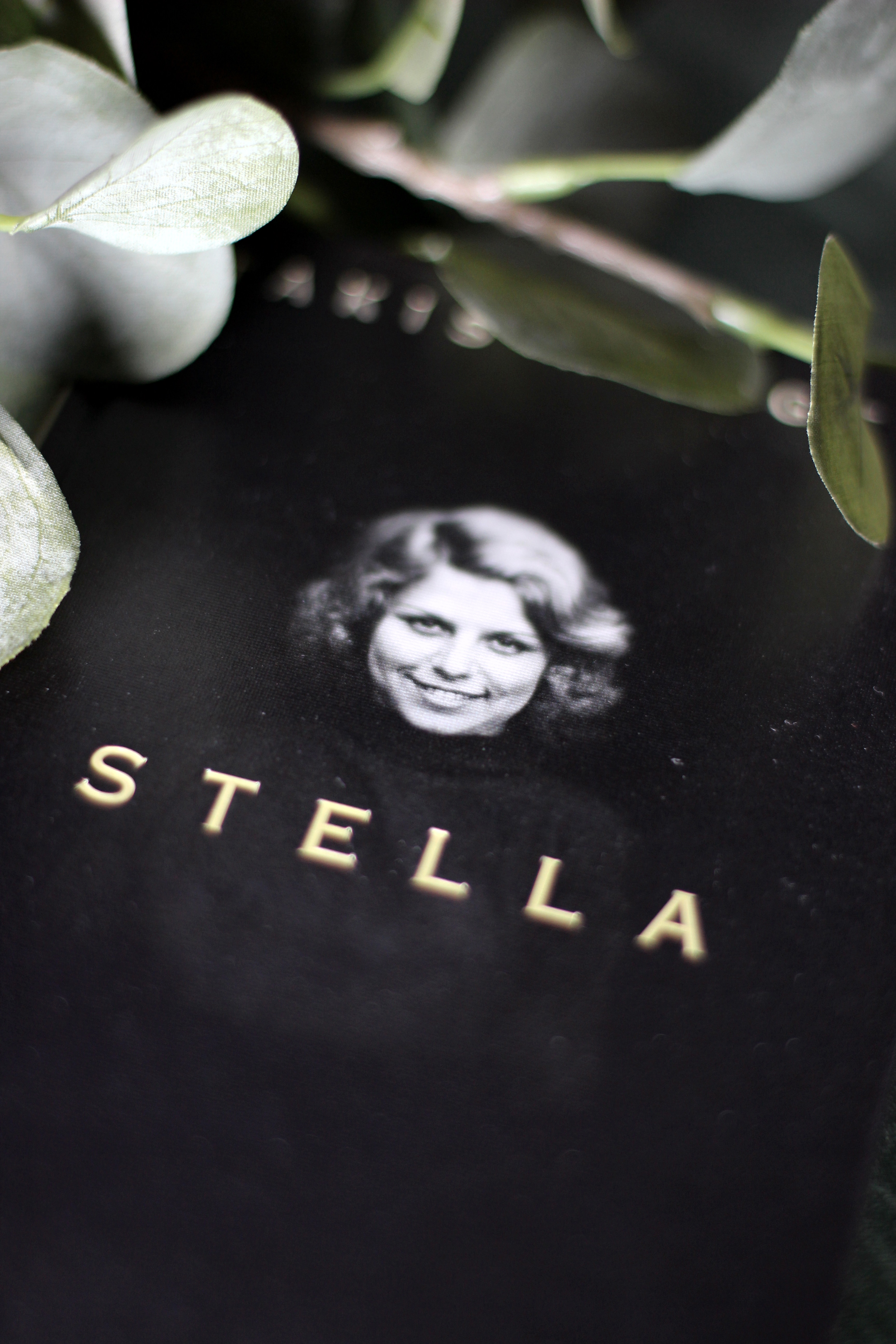 Rezension Stella von Takis Würger
