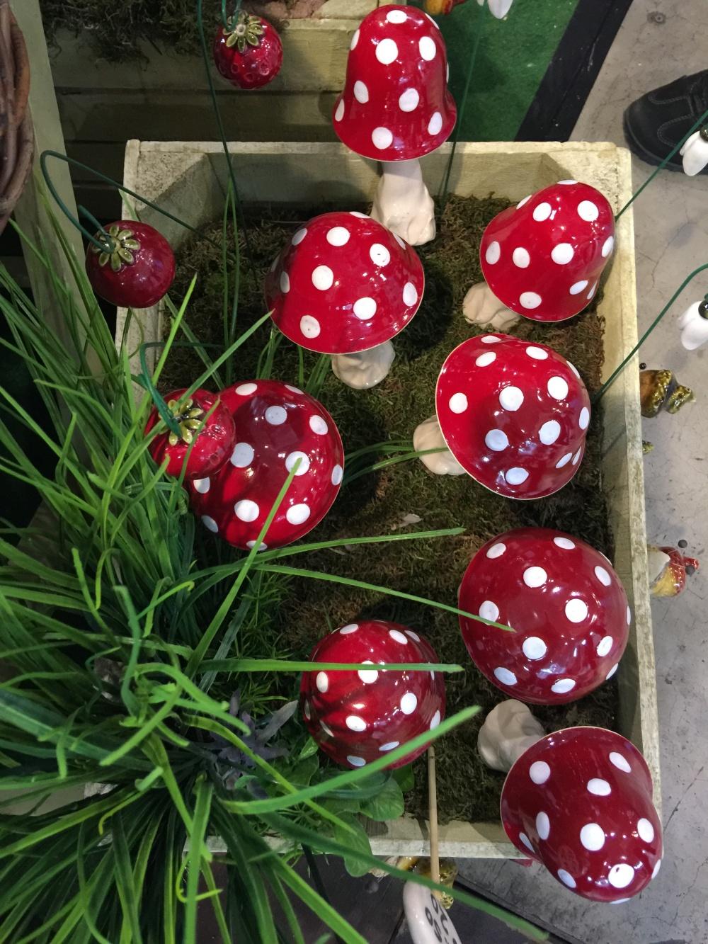 Pilze auf der Kreativ Messe