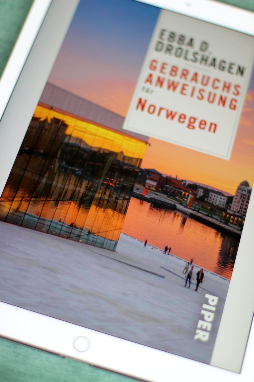 Rezension Gebrauchsanweisung für Norwegen