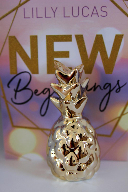 New Beginnings von Lilly Lucas