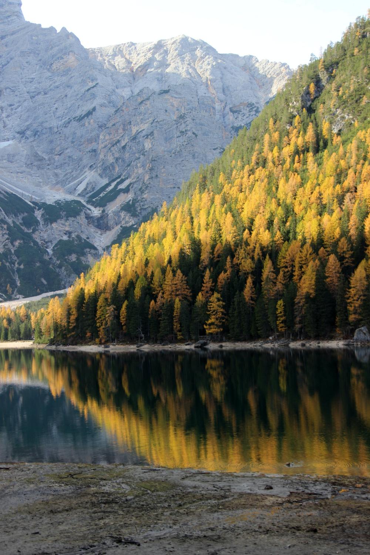 Pragser Wildsee Spiegelung