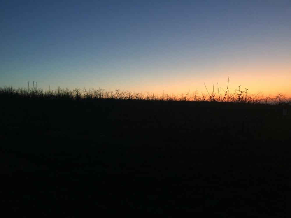 Januar 2020_Sonnenuntergang Neujahr