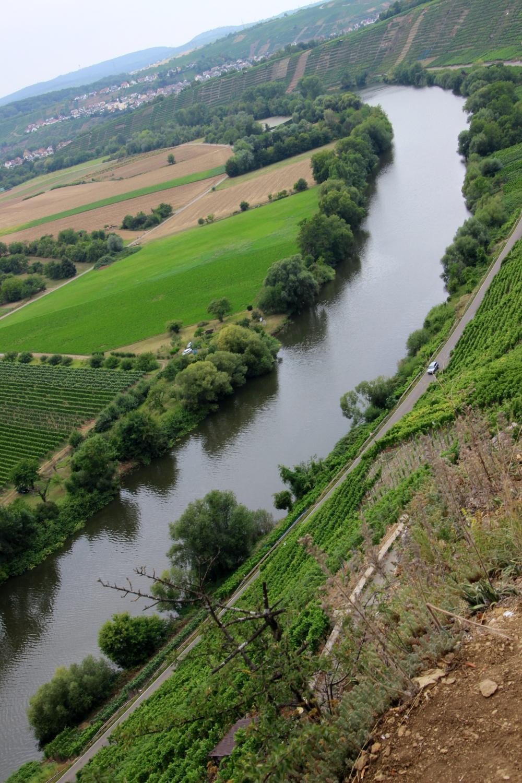 Wanderung Felsengärten Hessigheim Blick auf den Neckar