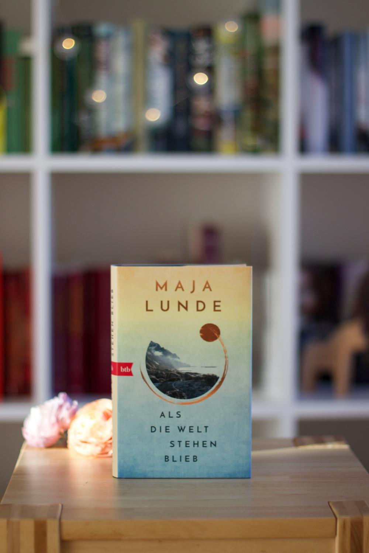 Lesemonat Februar 2021 Als die Welt stehen blieb von Maja Lunde