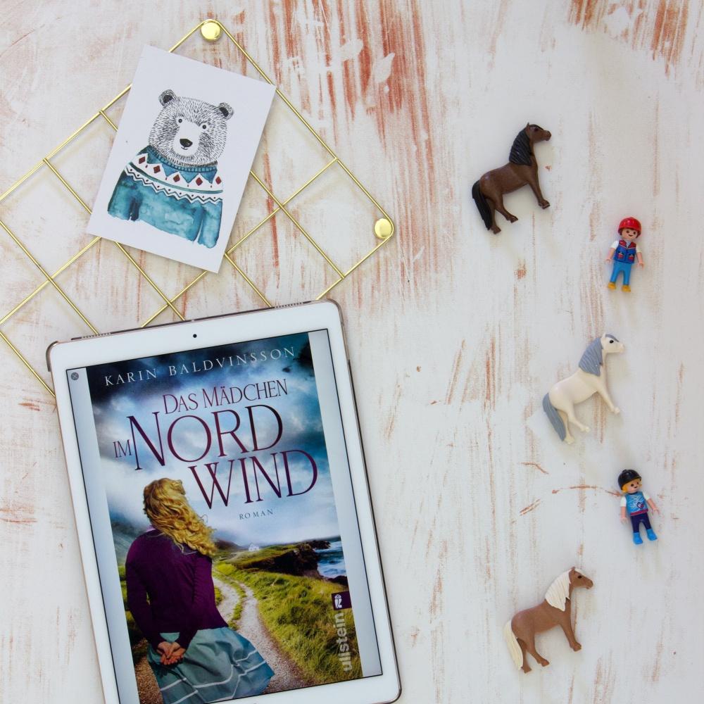 Das Mädchen im Nordwind von Karin Baldvinsson