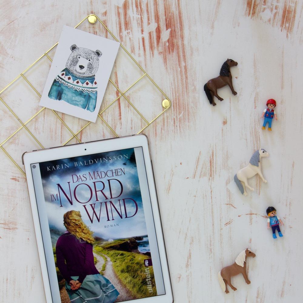Lesemonat Mai 2021 Das Mädchen im Nordwind von Karin Baldvinsson